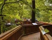 Interaktív erdészeti túra Nyugat-Mecsekben