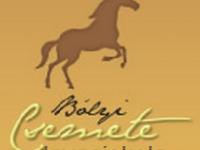 Bólyi Csemete Lovasiskola