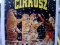 Magyar Nemzeti Cirkusz - színvonalas cirkuszi előadás Pécsett szeptember 1-12-ig!