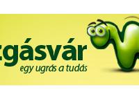 Mozgásvár - mozgásvizsgálat, fejlesztés