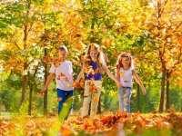 Napközis tábor az őszi szűnetben