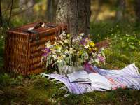 Elmarad a Zsolnay Piknik és a Sétatér Fesztivál!