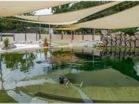 Átadták a pécsi fókapár új medencéjét