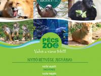 Minden, amit az Állatkert nyitásáról tudni érdemes!